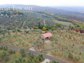Foto - Terreno agricolo in Vendita a Sinalunga
