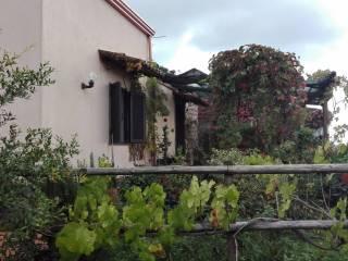 Foto - Rustico / Casale, ottimo stato, 88 mq, Sant'Alfio