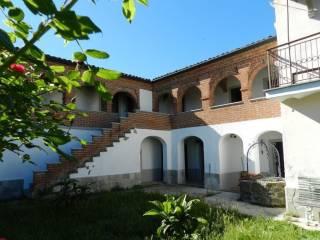 Foto - Rustico / Casale, ottimo stato, 740 mq, Spigno Monferrato