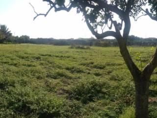 Foto - Terreno agricolo in Vendita a Vittoria