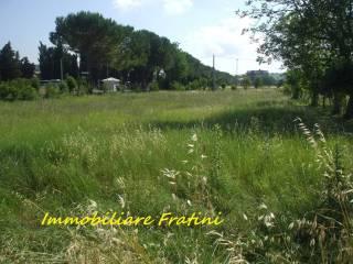 Foto - Terreno agricolo in Vendita a Sant'Egidio alla Vibrata