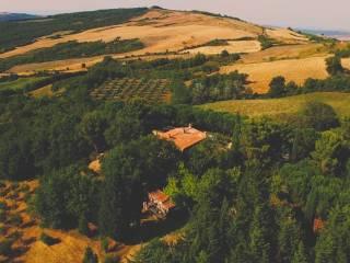 Foto - Rustico / Casale, buono stato, 500 mq, Castiglione d'Orcia