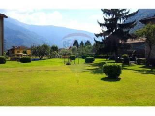 Foto - Terreno edificabile residenziale a Ardenno