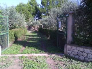 Foto - Terreno agricolo in Vendita a Chiaramonte Gulfi