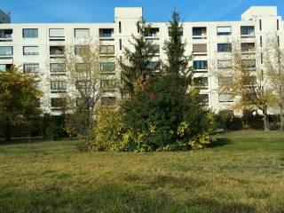 Foto - Appartamento buono stato, primo piano, San Lazzaro di Savena