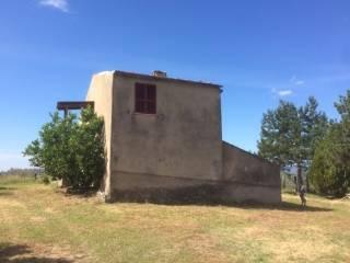 Foto - Terreno agricolo in Vendita a Montorio Romano