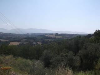 Foto - Terreno edificabile commerciale a Forano