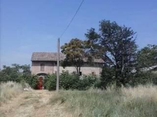 Foto - Rustico / Casale, da ristrutturare, 1700 mq, Correggio
