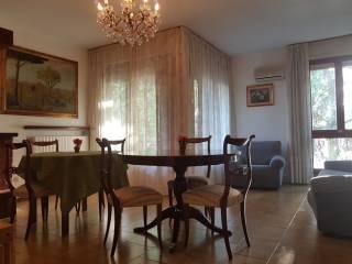 Foto - Appartamento via Teodorico Borgognoni 81, Ospedale-Stadio, Lucca