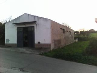 Immobile Vendita Portocannone