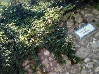 Foto - Villa via Catena, Montecalvario, Napoli