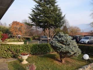 Foto - Villa via Duca d'Aosta, Albino