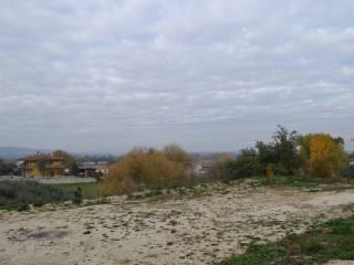 Foto - Terreno edificabile residenziale a Bettona