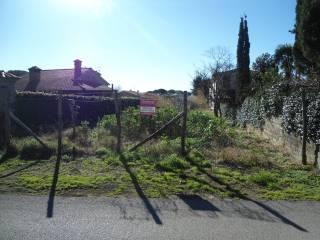 Foto - Terreno edificabile residenziale a Trevignano Romano