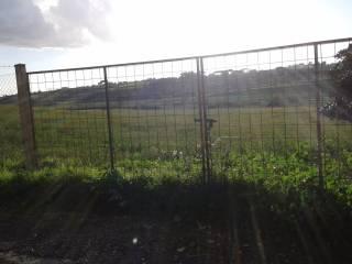 Foto - Terreno edificabile residenziale a Anguillara Sabazia