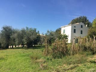 Foto - Rustico / Casale Strada Comunale del Colle, Corropoli
