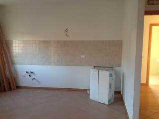Foto - Trilocale nuovo, primo piano, Loreggia