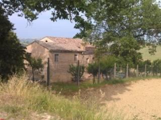 Foto - Rustico / Casale, da ristrutturare, 400 mq, Sant'Elpidio a Mare