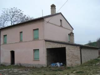 Foto - Rustico / Casale, da ristrutturare, 250 mq, Montottone