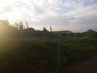 Foto - Terreno agricolo in Vendita a Pisa