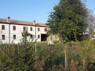 Foto - Rustico / Casale via Grotta 4, Tresigallo