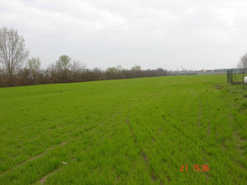 foto  Farmland for Sale in Mantova