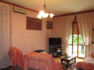 Foto - Appartamento buono stato, piano rialzato, Castelvetro Piacentino