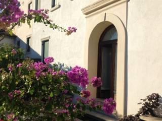 Foto - Palazzo / Stabile, ottimo stato, Conegliano