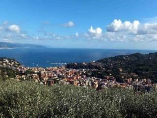 Foto - Villa, ottimo stato, 243 mq, San Lorenzo Della Costa, Santa Margherita Ligure