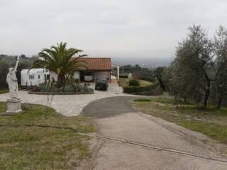 Foto - Villa Montevettolini, Monsummano Terme