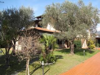 Foto - Villa, ottimo stato, 270 mq, Montignoso