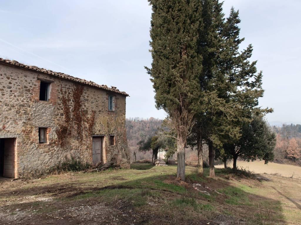 foto  Rustico / Casale via del Bosco, Umbertide