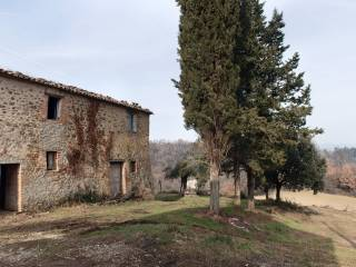 Foto - Rustico / Casale via del Bosco, Verna, Umbertide