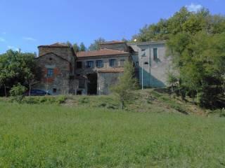 Foto - Rustico / Casale Località Pradelle, Testanello Tiedoli, Borgo Val di Taro