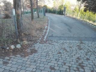 Foto - Villa, ottimo stato, 460 mq, Vezzano sul Crostolo