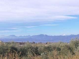 Foto - Terreno agricolo in Vendita a Bardolino