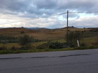 Foto - Terreno agricolo in Vendita a Campagnatico