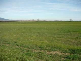Foto - Terreno agricolo in Vendita a San Carlo Canavese