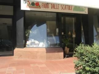 Immobile Vendita Prato  3 - Zarini, Mezzana, Repubblica, Montegrappa