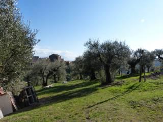 Foto - Appartamento Strada Provinciale Tiberina, Nazzano