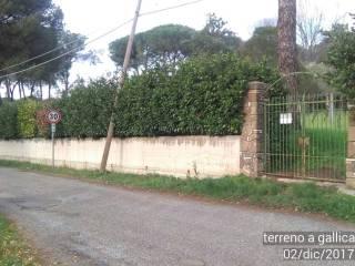 Foto - Terreno edificabile residenziale a Gallicano nel Lazio