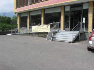 Immobile Affitto Sant'Ambrogio di Torino