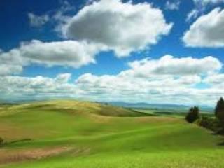 Foto - Terreno agricolo in Vendita a Vaprio d'Adda