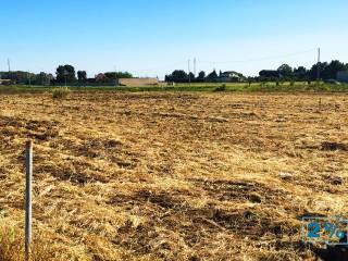 Foto - Terreno agricolo in Vendita a Brindisi