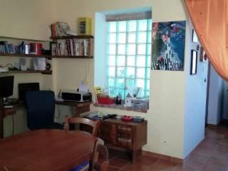 Foto - Rustico / Casale Località Santa Lucia, Santa Lucia, Roseto degli Abruzzi