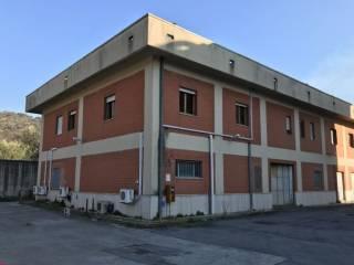 Immobile Affitto Vallo della Lucania