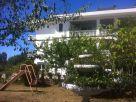Appartamento Vendita Paliano
