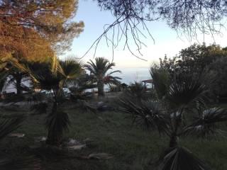 Foto - Terreno edificabile residenziale a Bonifati