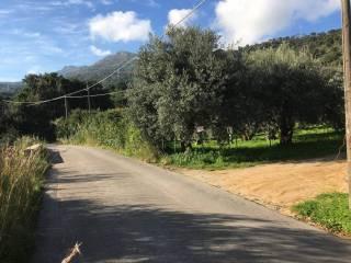 Foto - Terreno agricolo in Vendita a Cefalù