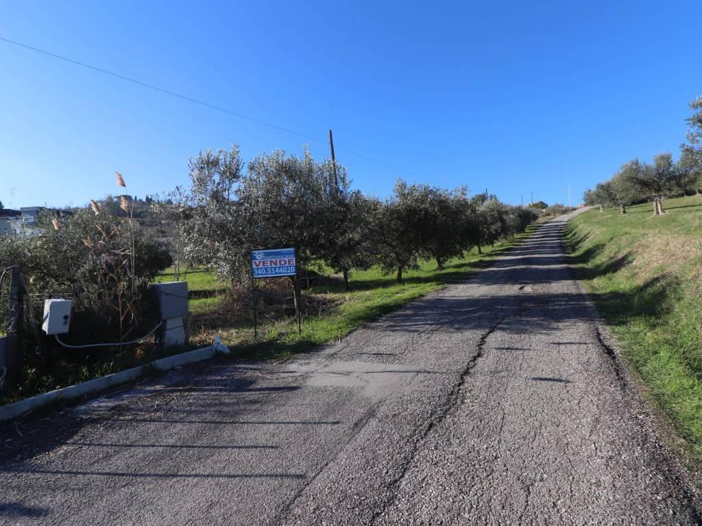 foto panoramica Terreno edificabile residenziale a Tortoreto